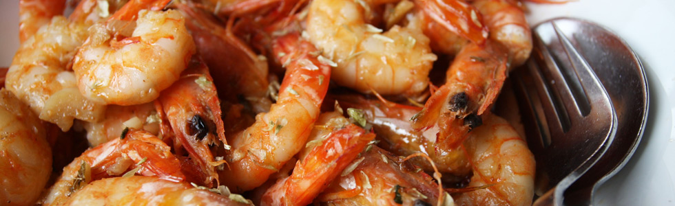 algarve_shrimps_top_sunbirdie_longstay