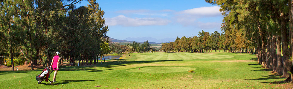 sydafrika_stellenbosch_devonvale-golf_sunbirdie-longstay-golf_top